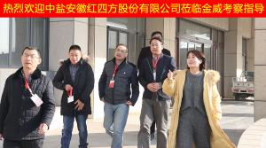 中盐安徽红四方股份有限公司领导莅临bob手机网页